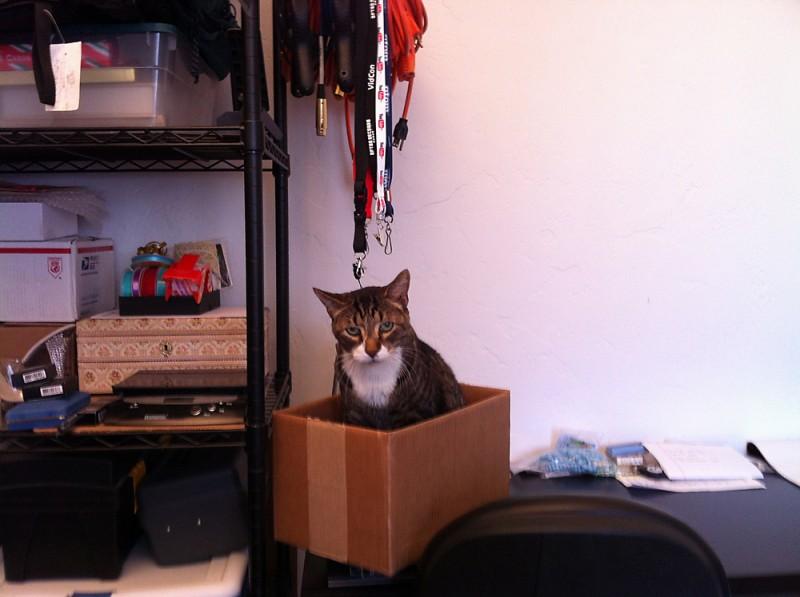 Maxwell in a Box